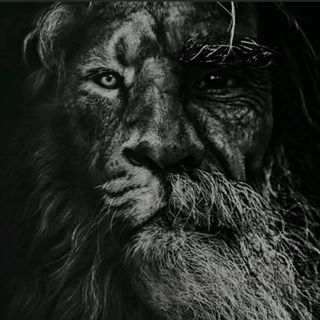 Khabib Nurmagomedov Profile Image