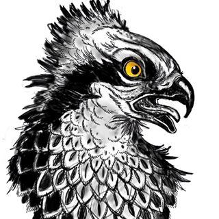 ben merrell Profile Image